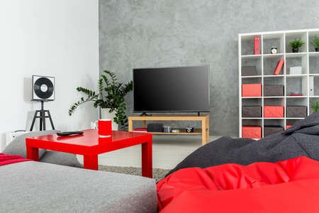 tv set: Studio apartment arranged in grey and red with large sitting sacks and a tv set