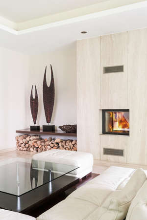 fireplace living room: Shot of a white modern living room with a fireplace