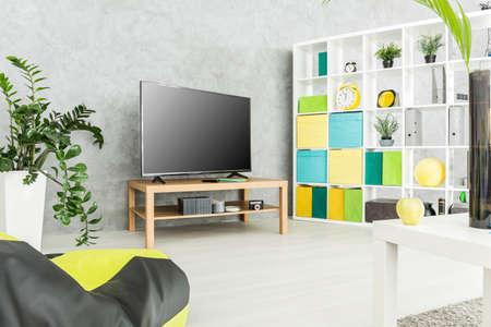 Moderna sala de estar con un televisor y un gran bastidor con cajas y objetos de decoración en él