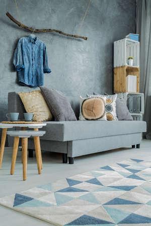 Moderne woonkamer in grijs met sofa, patroon tapijt en stijlvolle woonaccessoires