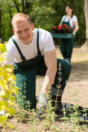 blue collar: Blue collar workers in the garden planting flowers Stock Photo