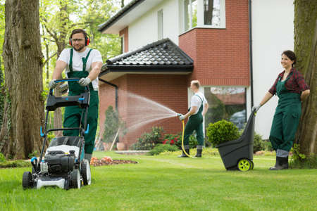 Preparing garden for the summer by team of gardeners Stock Photo