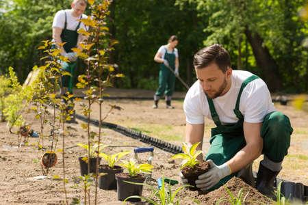 Team van de tuinders op het werk, het planten, wieden en het graven in de tuin