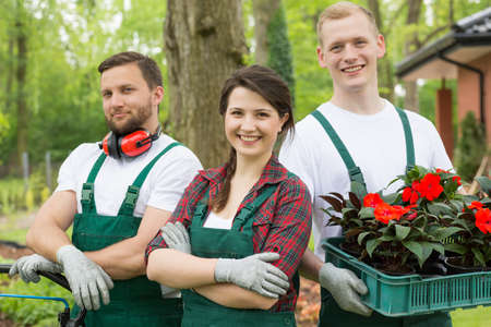 boiler suit: Team of gardeners about to plant ssedling of red flowers