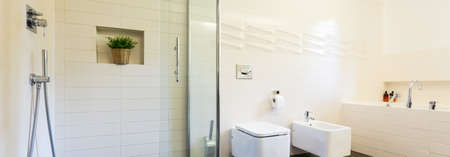 bidet: White spacious villa bathroom with bidet, toilet and walk in shower, panorama Stock Photo