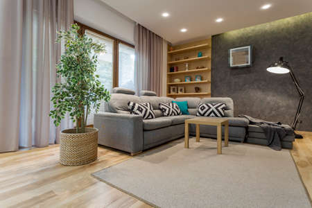 comfy: Shot of a comfortable living room interior with a comfy gray sofa