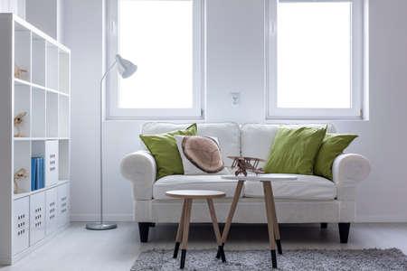 Shot uit een woonkamer ontworpen in wit met een mooie bank en een grote boekenkast