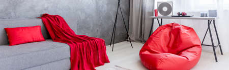 Shot of a grey living room with a red bean bag and a red blanket Reklamní fotografie