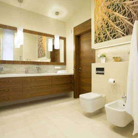 washroom: Spacious washroom with wooden furniture in modern interior