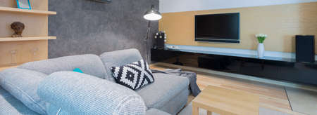 idea comfortable: Shot of a cozy living room with a comfortable sofa and a TV