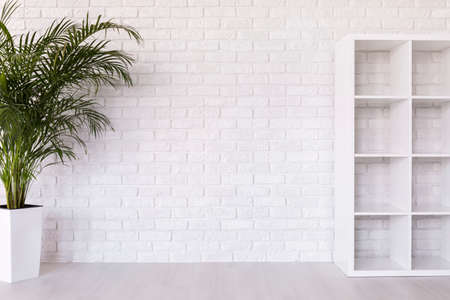 clearness: White bookstand and plant  on the background of brick white wall