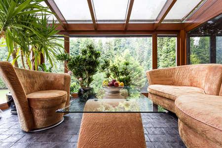 plante: Prise de vue d'un salon moderne et élégant avec des meubles beige