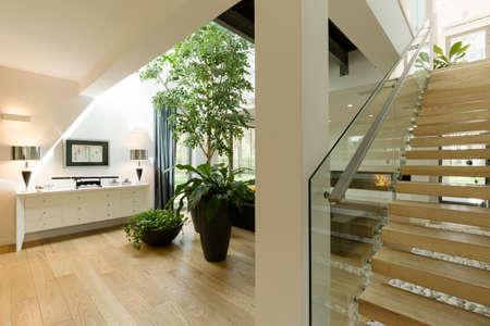 case moderne: Piante in sala casa in interni moderni loft