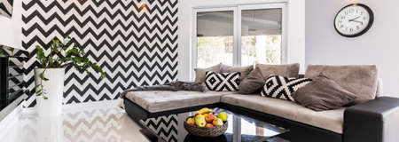 room decor: Panoramic shot of a living room interior designed in black and white