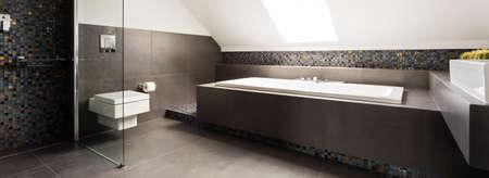 Bagno elegante con vasca rettangolare e doccia moderna Archivio Fotografico - 61575947