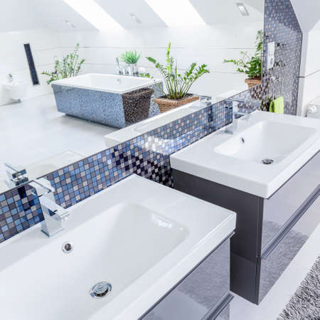 basins: Close-up of two porcelain basins in modern bathroom