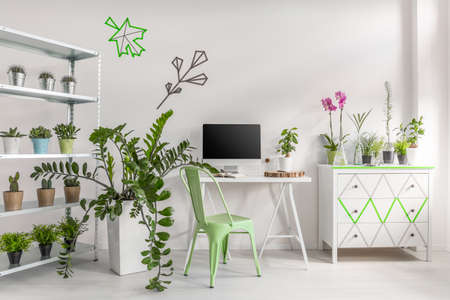 White home interior decorated with potted plants, simple desk, chair, computer and commode