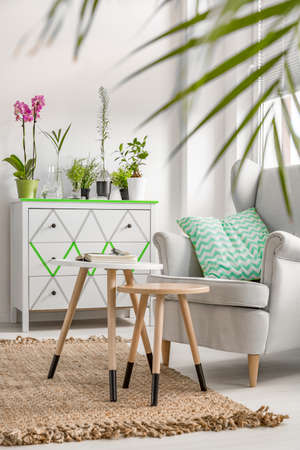 Potted plants: New style living room with carpet, armchair, small table, commode and decorative houseplants Stock Photo