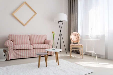 upholstered: Light interior with upholstered stylish sofa and chair