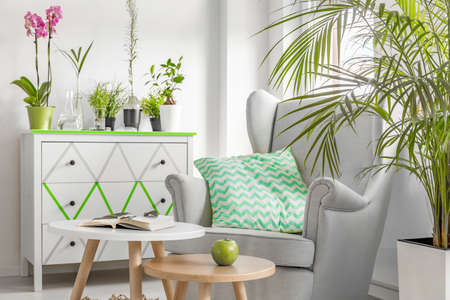 room: Light, new style living room with white coomode, armchair, small table and decorative houseplants Stock Photo