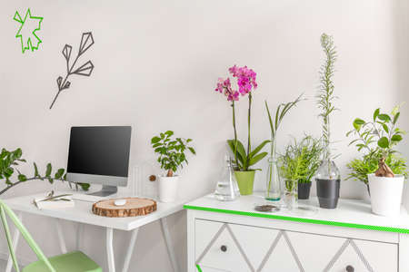 green office: Light interior with simple desk, computer and commode decorated with green houseplants