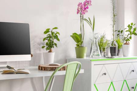 机、椅子、コンピューター、便器や装飾的な室内用植物で白いホーム オフィス 写真素材