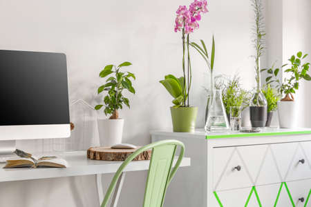 home and garden: White home office with desk, chair, computer, commode and decorative houseplants