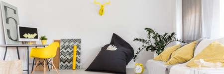 Bright interior with comfortable couch, bean bag chair and yellow decorations Reklamní fotografie