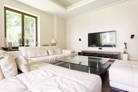 living room wall: Luxurious living room with large leather sofas and a glass coffee table