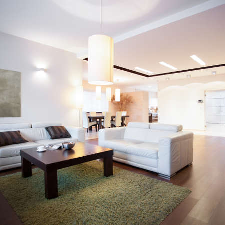 Open space with living room at home