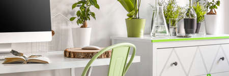 lightsome: View of chest of drawers and desk with lot of plants on them Stock Photo