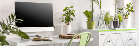computer desk: View of desk with computer screen in the surrounding of plants Stock Photo