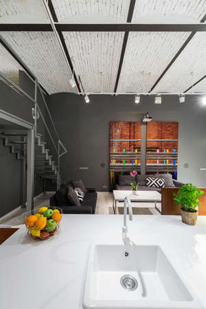 entresol: Shot of a sink and a living room in a modern loft apartment