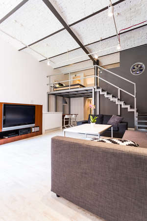APARTMENT LIVING: Shot of a spacious living room and an entresol in a loft apartment
