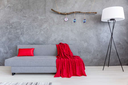 ascetic: Modern grey sofa with a red knitted blanket in an ascetic interior of a living room