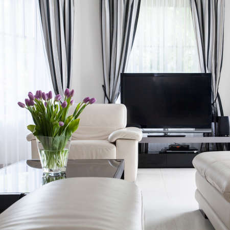 leather furniture: White leather furniture are very decorative