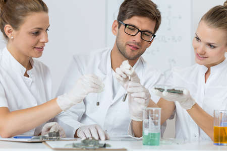 technical university: Shot of young chemists conducting an experiment