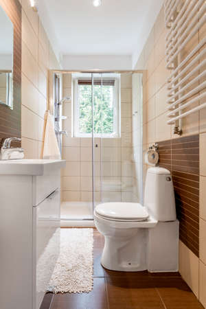 tiny: Small bathroom interior in brown with window, toilet, shower and basin