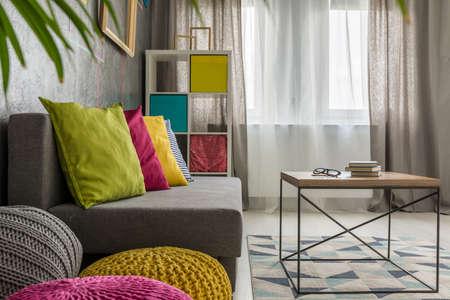 Nieuwe stijl grijze woonkamer met raam, bank en tafel