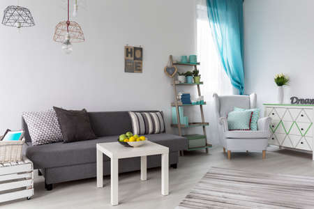 Shot of a pastel living room with a grey sofa and white coffee table Zdjęcie Seryjne