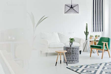 Salon lumineux avec canapé, tapis et fauteuil