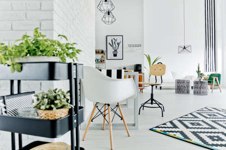 ハーブ スタンド、テーブル、椅子、カーペットが付いている白いアパート
