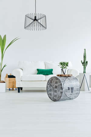 houseplant: White room with sofa and industrial pendant lamp Stock Photo