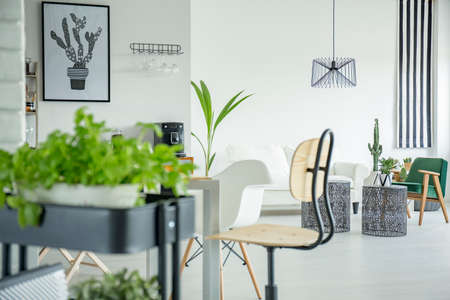 white interior: White home interior with herb stand, wooden chair and table Stock Photo