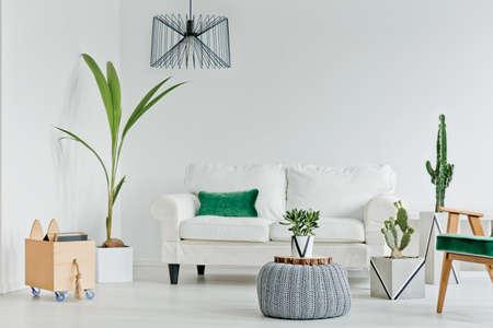 Witte woonkamer met decoratieve kamerplanten, bank en fauteuil Stockfoto