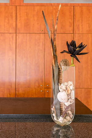amenities: Glazed flower vase with a plant and seashells with the wooden cabinet at the background Stock Photo