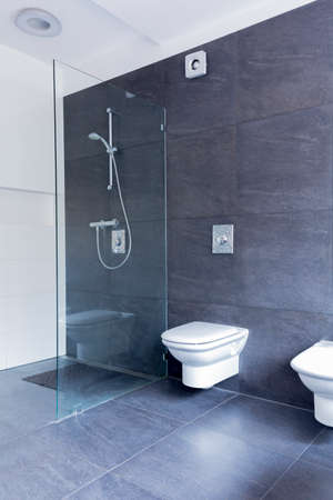 Luxurious grey bathroom with large granite tiles on the floor and walls, and glass shower screen Stock Photo - 66355778