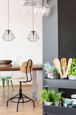 communal: Apartment with communal table, industrial lamps, chair and kitchen cart