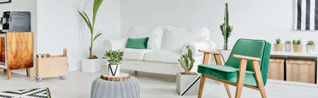 White and green design of spacious modern living room