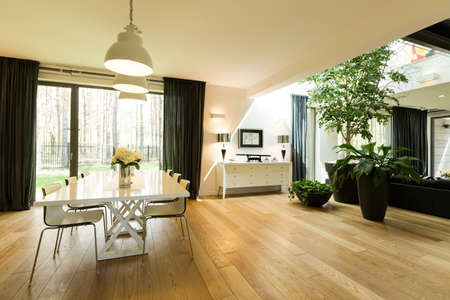 Open spacious room with large windows, minimalist dining table with chairs, plants and pendant lamps
